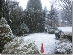 first snow  01