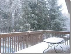 first snow  02