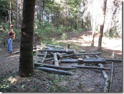 woodcutting 09