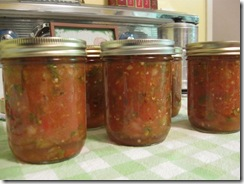 Our Favorite Salsa - The Backyard Farmwife