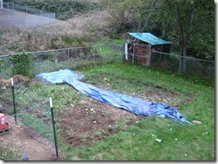 garden gone 10