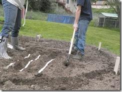 first garden  12