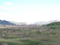 2010_08_08Krafla0001.JPG Photo