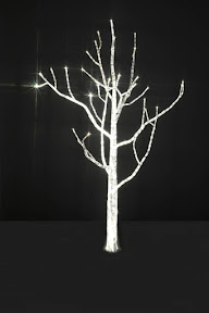 lighttree5 Sombra... y mucha luz