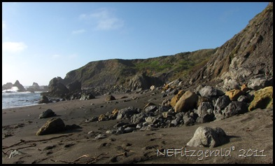 IMG_5794 FranciscanBlocks AtShell Beach