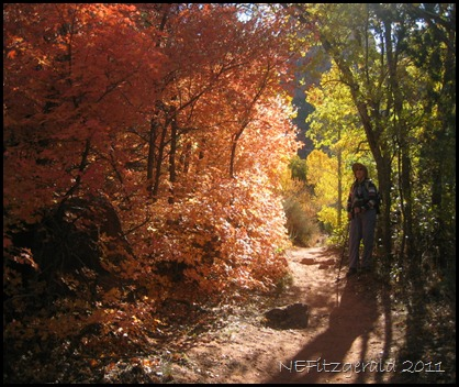 Autumn_ ZionNP