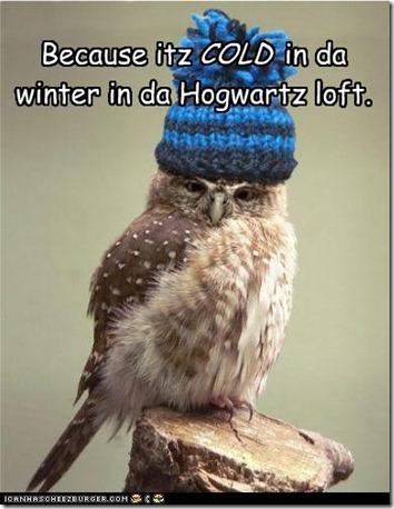 funny-pictures-because-itz-in-da-winter-in-da-hogwartz-loft