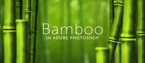 bamboo-lead1