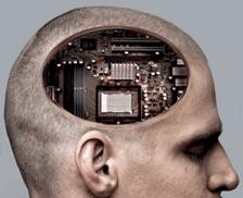 50-mitos-y-verdades-sobre-el-cerebro