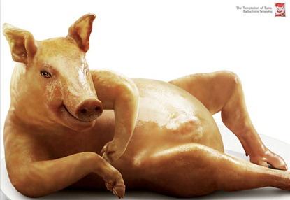 temptation-from-pig