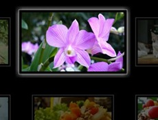 css3gallery_11