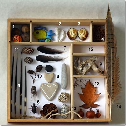 natura in scatola-12