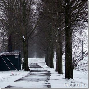 nebbia e gelo-10