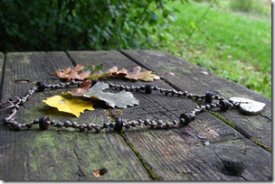 selva d'autunno-6