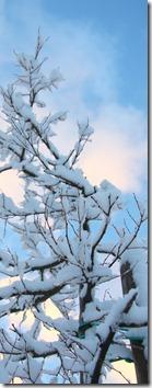un cuore fra la neve-2