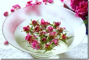 Confettura di rose-10