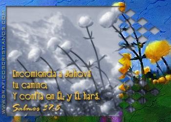 pic_2005-02-21_220509