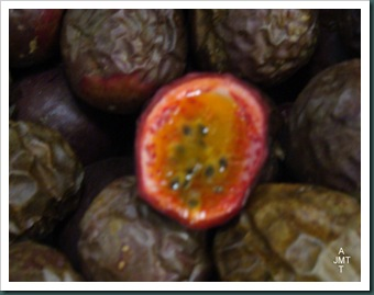 DSC03314-fruit-de-la-passion brun BW