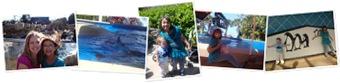 View Hannah Sea World Birthday