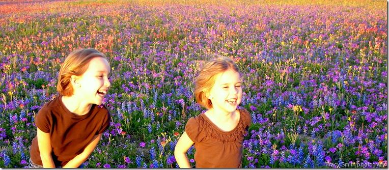 wildflowers_2010-2