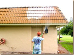 roof cleaning 029