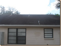 Tile-Roof-Cleaning-33601-Tampa-FL 11-17-2009 3-35-05 AM