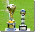 Taça do campeão 2011
