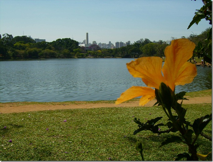 ibirapuera-sao-paulo-brasil