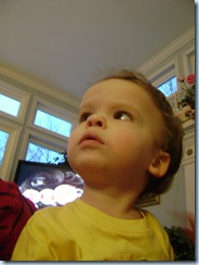 Jan 4 2010 029