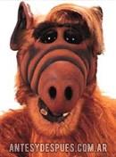 Alf, 1986-1990