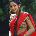 actress & Item dancer photo gallery - part 4
