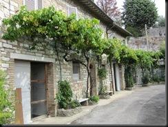 September 7 2010 Assisi 025