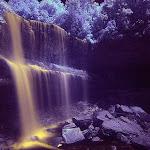 infraredphotography3.jpg