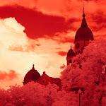 infraredphotography7.jpg