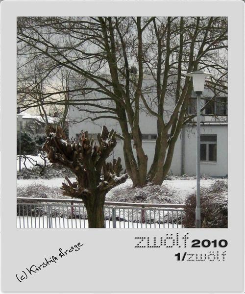 01-zwoelf2010-2