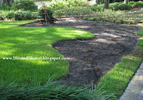 Front Lawn Renovation Project