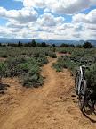 Luke's Trail