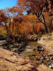 Lower Range Creek