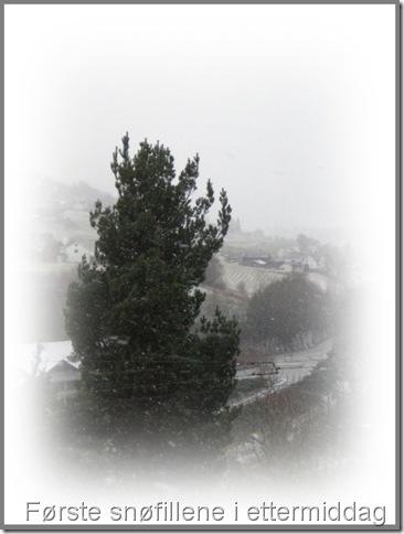 første snøen 004-tile
