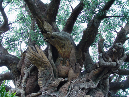 The Tree of Life at Disneys Animal Kingdom 17