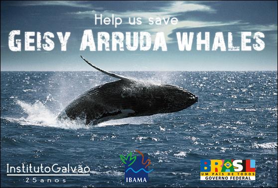 geisyarrudawhales Help us save Geisy Arruda whales