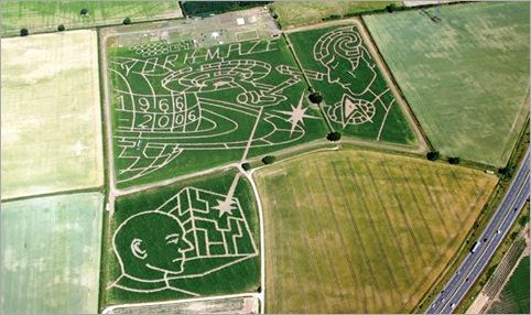 York Maize Maze 2006