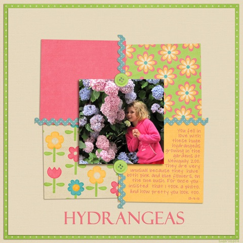 526 SnS-Hydrangeas