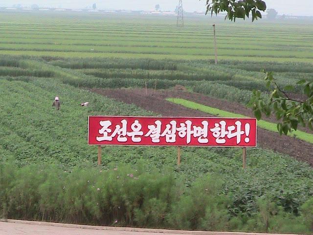 Fotos de las Crónicas de Un Viaje a Corea Granja%20Migok%20%285%29