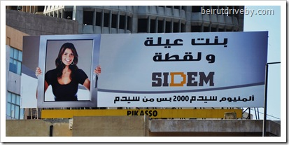 sidem (2)