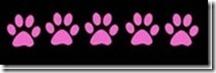 5_paws_thumb[1]