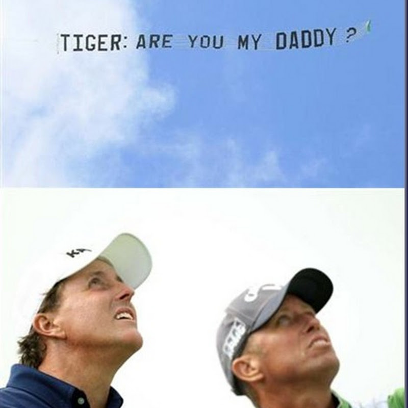 Tiger Are You My Daddy?  Seen above Pebble Beach!