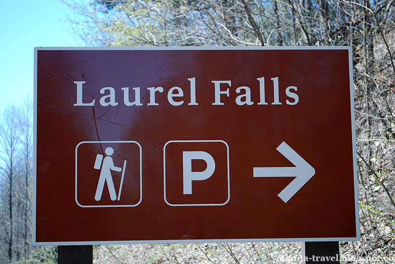Тропа Лорел Фолс. Laurel Falls Trail