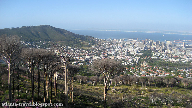 Table Mountain Столовая гора Кейптаун Cape Town