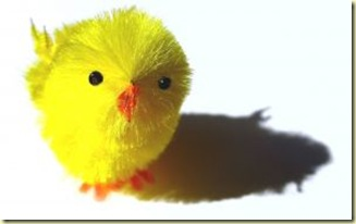 494268_fierce_easter_chick_1